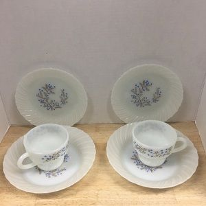 Termocrisa Mexico Milk Glass Blue/Brown Floral